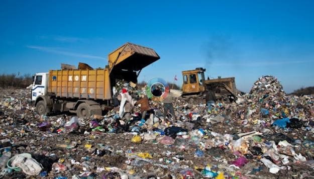 """Результат пошуку зображень за запитом """"Рибне сміттєзвалище"""""""