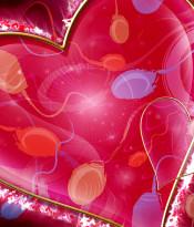 oboi-valentinka