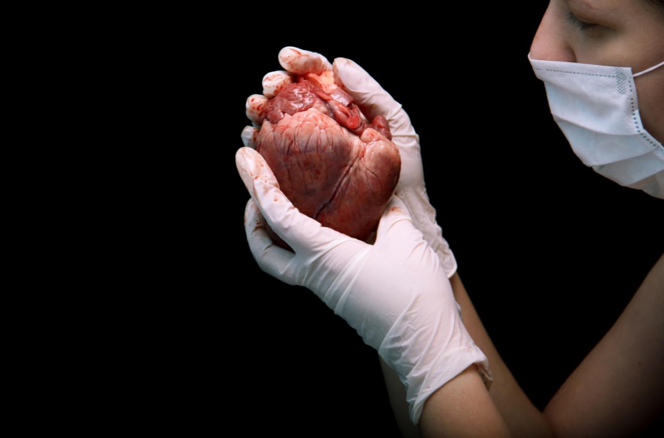 большой букет сердце в руках хирурга картинки пожелания, новогоднюю